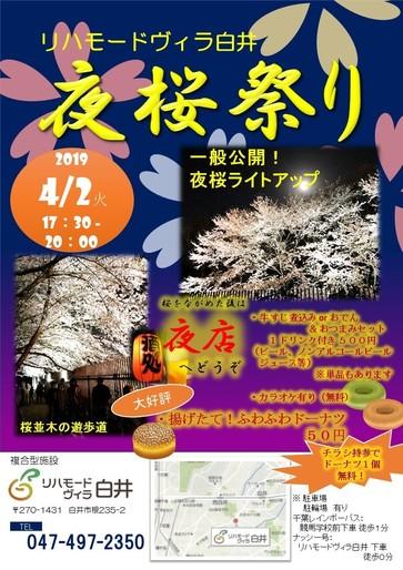 夜桜祭り.jpg